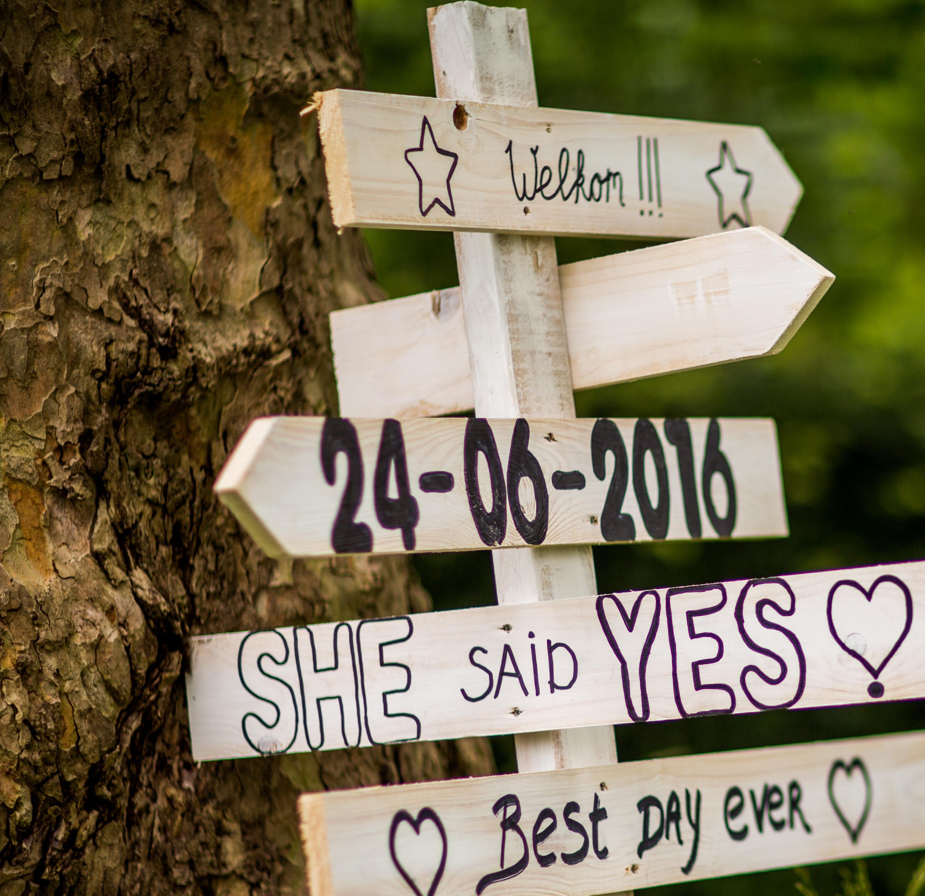 Wedding Blueprint
